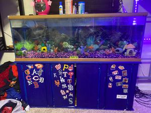 100 gallon fish tank with stand for Sale in Largo, FL
