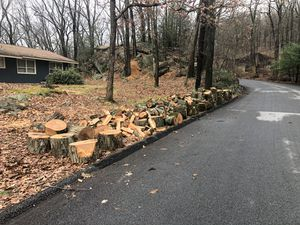 Free Red Oak Firewood for Sale in Tuxedo Park, NY