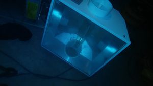 Thousand watt light for Sale in Columbus, OH