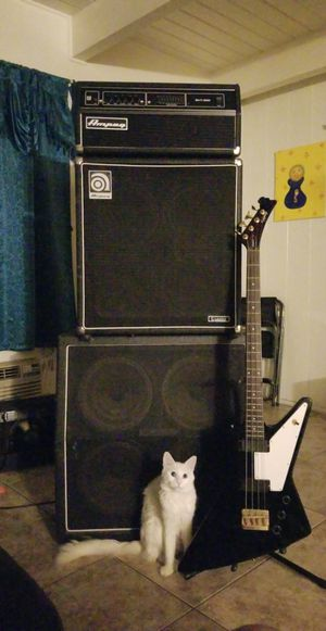 Bass guitar and amp for Sale in Los Angeles, CA
