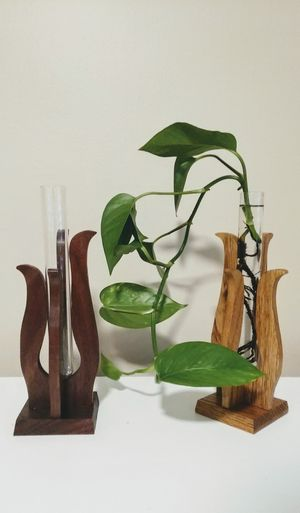 Modern, contemporary hand-made test tube flower / hydroponic plant vases - NEW- Great Gift Idea! for Sale in Oshkosh, WI