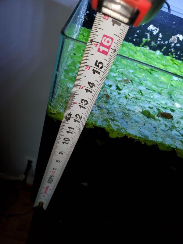 Aquarium 24 gal cube with internal filter