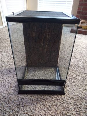 Naturalistic Terrarium 12×12×18 with built-in screen top for Sale in Plano, TX