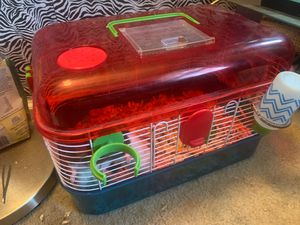 RATS and CAGE! for Sale in Chesterfield, VA