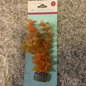 Fish Tank Plants Random for Sale in Wood Dale, IL