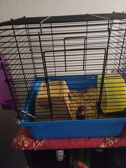 Rat Cage/Carrier for Sale in Riverside,  CA