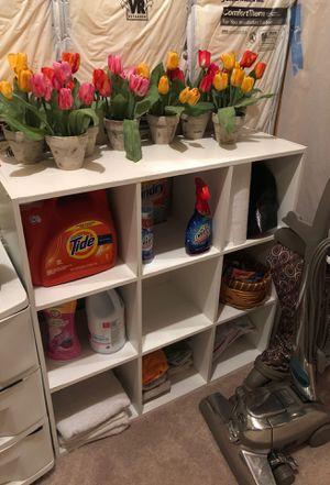 Storage organizer for Sale in Chanhassen, MN