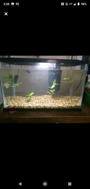 5 gallon fish tank comes with filter lid led light and gravel for Sale in Brownsville, TX