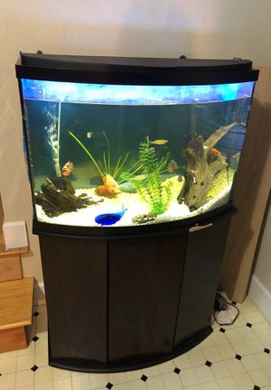 36 gallon fish tank with stand $ 150 for Sale in San Francisco, CA