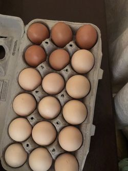 Eggs for Sale in Perris,  CA