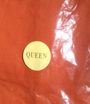 Queen Size Burnt Orange Set of 2 Pillow Cases for Sale in Taylor, MI