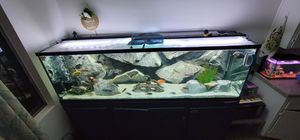 200 gallon fish tank with stand, with coustom-made Aquadecor 3D Background, 1500$ take and go . for Sale in Costa Mesa, CA
