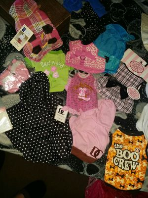 Sm/med Dog clothes for Sale in Wenatchee, WA