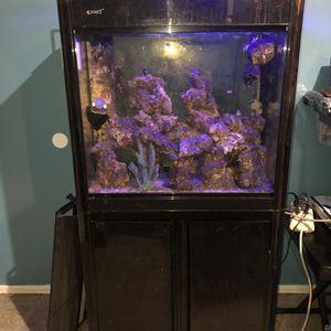 Black Fish Tank for Sale in La Puente, CA