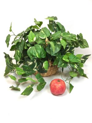 Large Bushy Pothos Faux Fake Plant in Woven Wood Rattan Basket for Sale in Tustin, CA