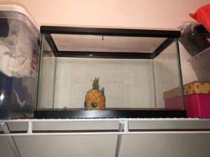 Fish tank used as hamster house for Sale in Oxford, MA