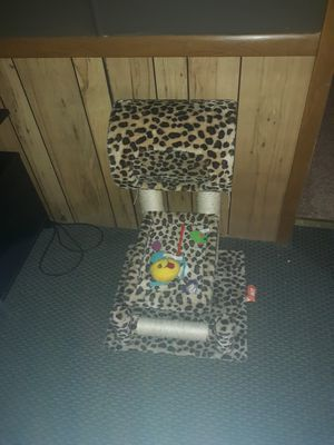 Cat bed/ scratcher for Sale in Cumberland, VA