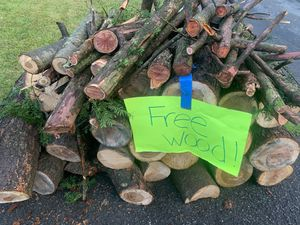Free firewood for Sale in Plainfield, NJ