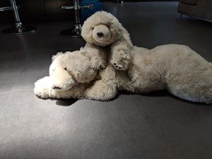 Polar bear stuffed animal toy for Sale in Hollywood, FL
