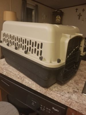 Medium Dog/Cat carry crate for Sale in Houston, TX