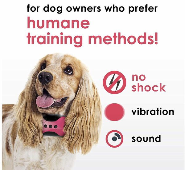 Vibrating Dog Collar