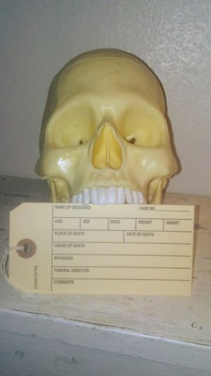 4 Real Morgue Tags for Sale in Laurel, IN