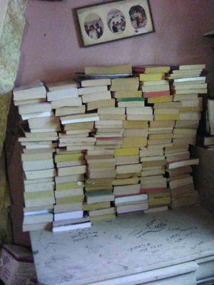 Over 100 novel books all for 10.00 for Sale in San Antonio, TX