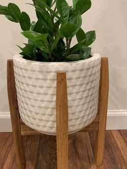 Ceramic Planter With Plant Stand for Sale in Shoreline,  WA