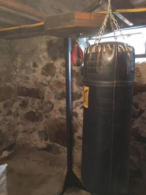 Heavy Bag & Speed bag w/ Cast Iron Stand for Sale in Boston, MA
