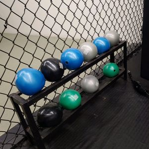 Weighted Balls and Stand for Sale in Azusa, CA