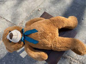 Teddy Bear for Sale in Livonia, MI