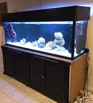 130 Gallon Aquarium Drilled with Sump Filter for Sale in Chicago, IL