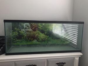 50 gal. Fish tank for Sale in Zephyrhills, FL