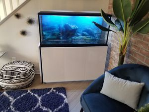 55 gallon glass aquarium and modern gloss white stand- for Sale in Murrieta, CA
