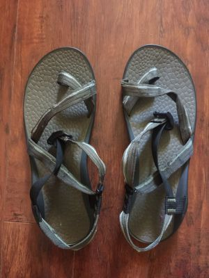 Chacos NWOT sz 13 for Sale in Oldsmar, FL
