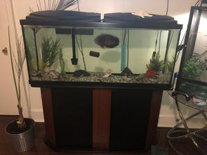 Fish tank and table for Sale in East Haven, CT