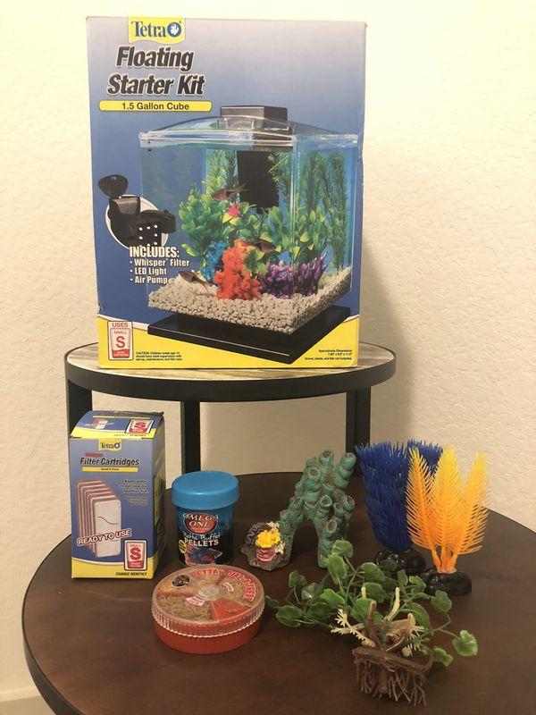 Tetra Fish Aquarium