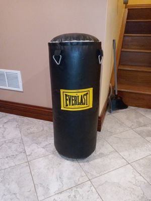Everlast 50lb punching bag for Sale in Park Ridge, IL