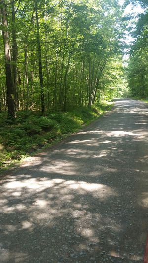 Land for Sale for Sale in Erin, NY
