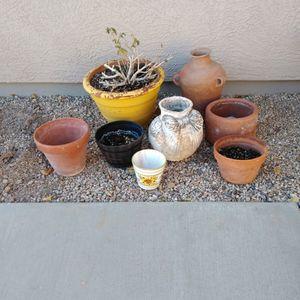 Flower Pots for Sale in Peoria, AZ