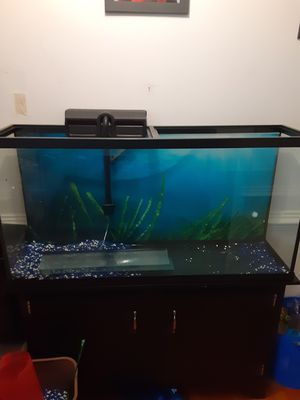 60gallon fishtank and stand for Sale in Portsmouth, VA