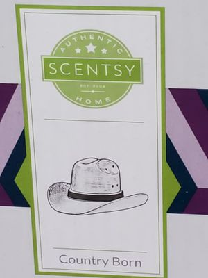 Scentsy country born warmer for Sale in San Bernardino, CA