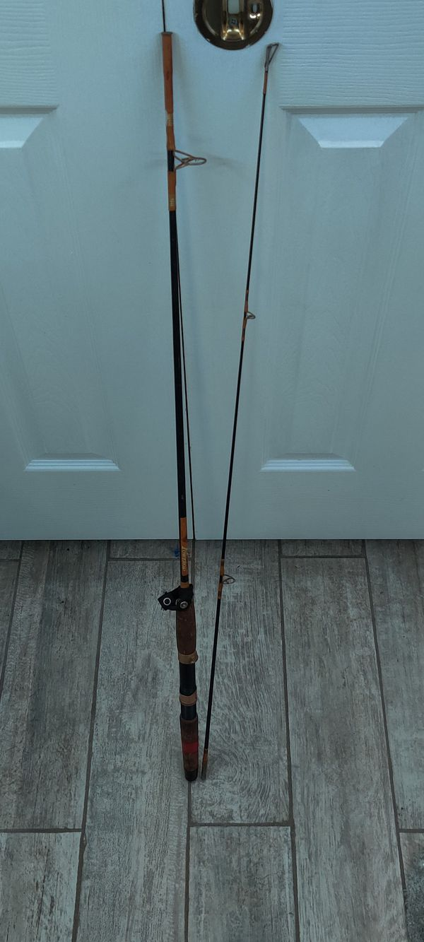 Fishing rods and net