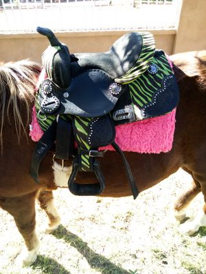 PONY SADDLE/ MONTURA for Sale in Goodyear, AZ