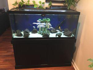 75 gallon setup for Sale in Sugar Notch, PA