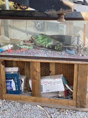 55 Gallon Fish Tank & Stand with all supplies for Sale in Wildomar, CA