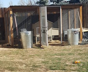 Chicken coop with house and 5 chickens for Sale in Aurora, CO
