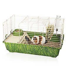 Small pet cage fully sanitized for Sale in Weston, MA