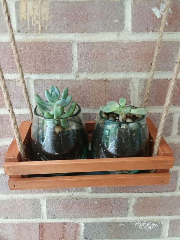 Hanging succulent/herb planter