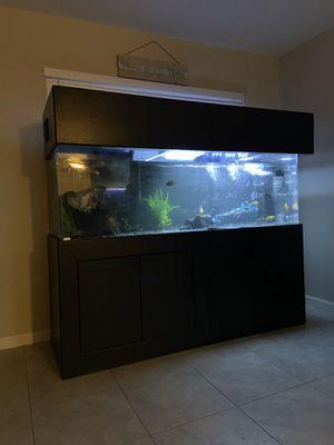180 gallon fish tank (acrylic clear for life) for Sale in Coachella, CA